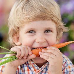 Dieta bezmięsna - dobra, czy zła? - okładka