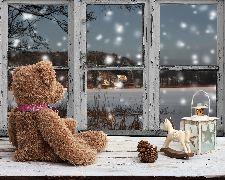 Miś Patryś i pierwszy śnieg - okładka